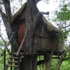 Marcs Tree House Camp - Copy